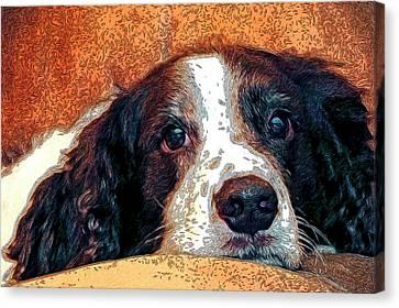 Bella Canvas Print by James Steele