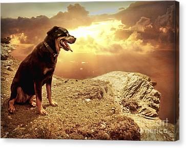 Bella My Rottweiler Canvas Print by Eugene James