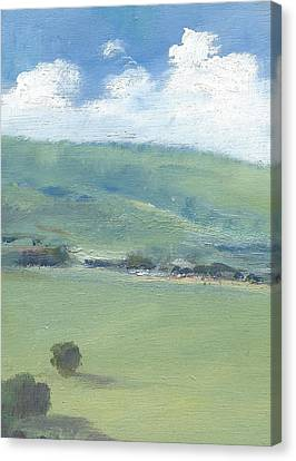 Bembridge Down In Early Summer Canvas Print by Alan Daysh