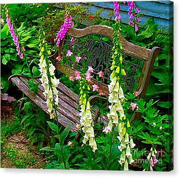 Bench Among The Foxgloves Canvas Print by Julie Dant