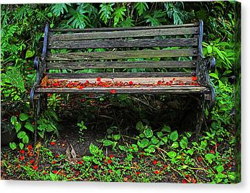 Canvas Print featuring the photograph Bench And Flowers- St Lucia. by Chester Williams