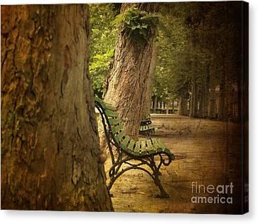 Park Benches Canvas Print - Bench In A Park by Bernard Jaubert