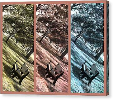 Bench In The Park Triptych  Canvas Print by Susanne Van Hulst