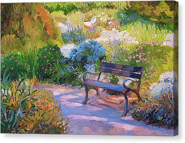 Bench On Margaret Island Canvas Print