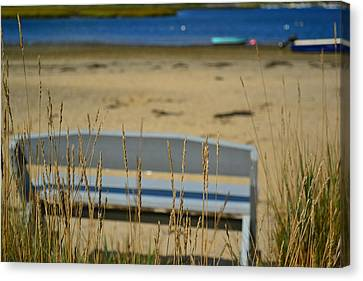 Bench On The Beach Canvas Print