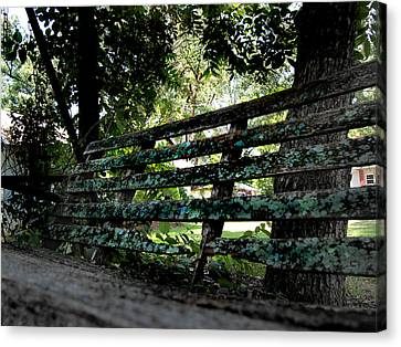 Benched Canvas Print by Tammy Cantrell