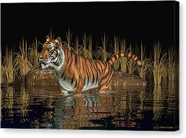 Bengal Tiger Canvas Print by Walter Colvin