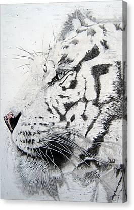 Bengala Canvas Print