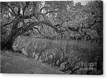 Canvas Print featuring the photograph Bent Oak River Reflection by Larry Nieland
