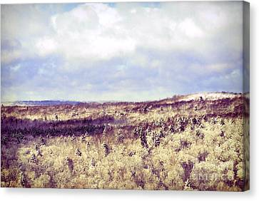 Snow-covered Landscape Canvas Print - Berkshires In Winter by HD Connelly