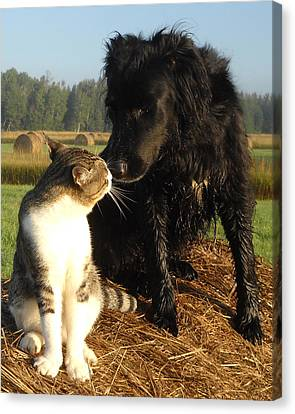 Best Buddies Portrait Canvas Print by Kent Lorentzen