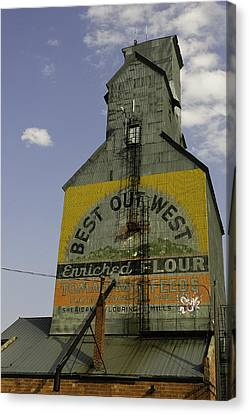 Best Out West Canvas Print by Kenneth McElroy
