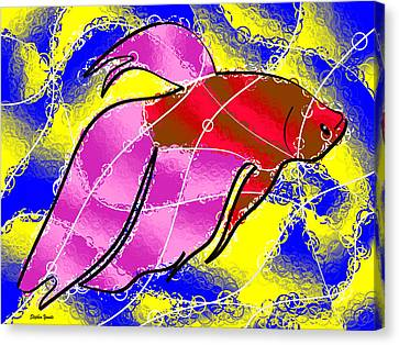 Betta Canvas Print by Stephen Younts