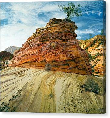 Between A Rock And A Soft Place Canvas Print by Robert Keller