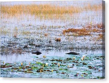 Beware Of Still Waters Canvas Print by Jan Amiss Photography