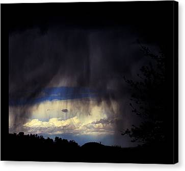 Canvas Print featuring the photograph Beyond The Veil by Susanne Still