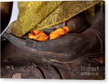 Bhumisparsa Mudra II In Colour Canvas Print by Dean Harte