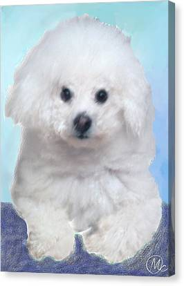 Canvas Print featuring the digital art Bichon Frise by Mary M Collins