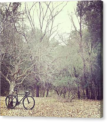 Bicycle Awaits At Entrance To Forest Canvas Print by Joey Celis