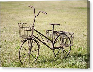 Bicycle Lawn Ornament Canvas Print by Jaak Nilson