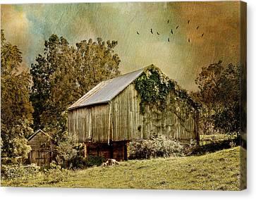Big Barn Little Barn Canvas Print by Kathy Jennings