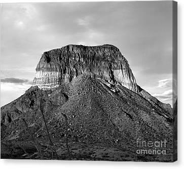 Big Bend Mesa Canvas Print
