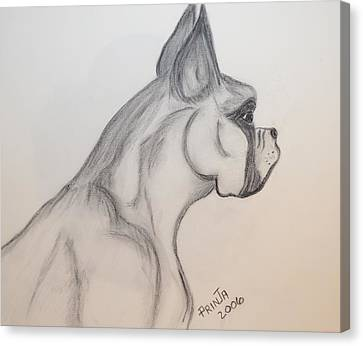 Canvas Print featuring the drawing Big Boxer by Maria Urso
