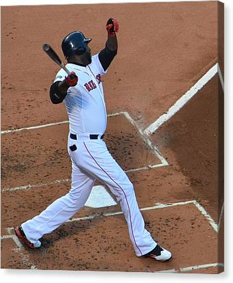 Big Papi Canvas Print by Judd Nathan