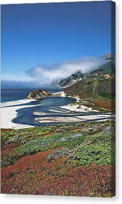 Canvas Print featuring the photograph Big Sur by Renee Hardison