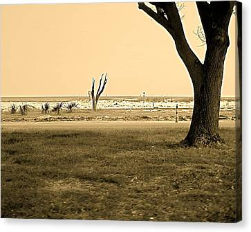 Canvas Print featuring the photograph Biloxi Coast by Blake Yeager