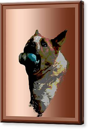 Binky Canvas Print by One Rude Dawg Orcutt
