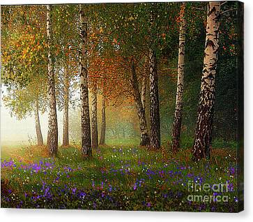 Birch Meadow Canvas Print by Robert Foster