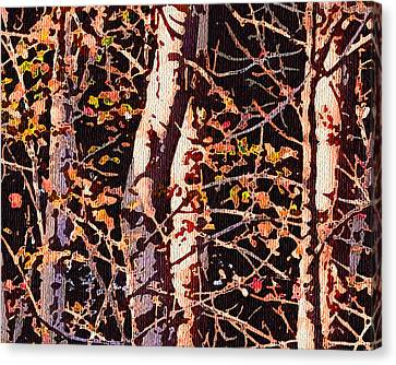 Birch Tapestry Canvas Print