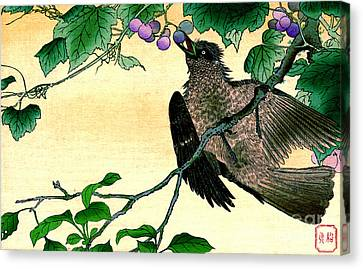 Bird Eating Grapes 1900 Canvas Print by Padre Art