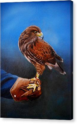 Canvas Print featuring the painting Bird In The Hand by Lynn Hughes