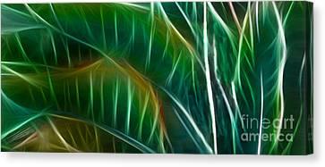 Bird Of Paradise Fractal Panel 3 Canvas Print by Peter Piatt
