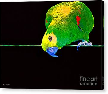 Bird On A Wire Canvas Print by Jerry L Barrett