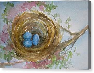 Birds Eggs In A Nest Canvas Print by Gloria Turner