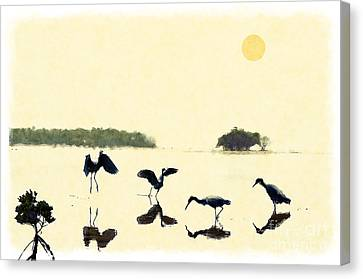 Canvas Print featuring the photograph birds feeding in the Everglades by Dan Friend
