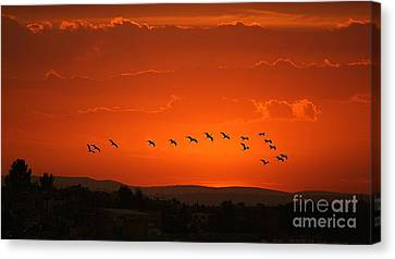 Canvas Print featuring the digital art Birds In A Crimson Sunset by John  Kolenberg