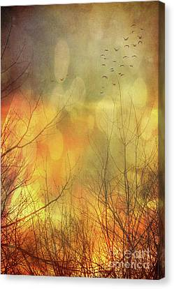 Birds In Flight At Sunset Canvas Print by Sandra Cunningham