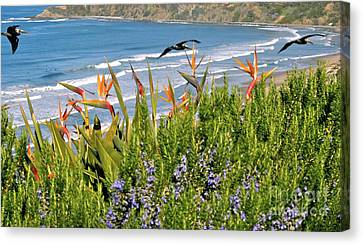 Canvas Print featuring the photograph Birds In Paradise by Johanne Peale