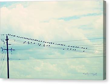 Birds On Wires Blue Tint Canvas Print by Paulette B Wright