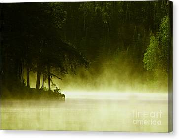 Biscotasing Canvas Print by Marjorie Imbeau