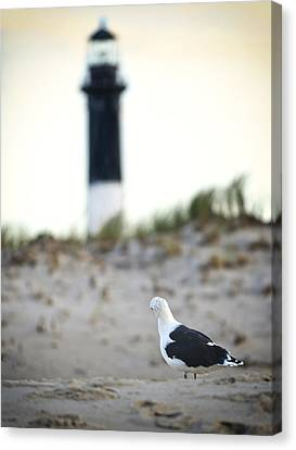 Black And White On The Beach Canvas Print by Vicki Jauron