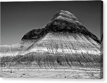 Black And White Painted Desert Canvas Print by Bob and Nadine Johnston