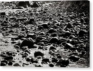 Jaco Canvas Print - Black And White Rocky Beach by Anthony Doudt
