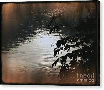 My Space Canvas Print - Black Bamboo by Angela Wright