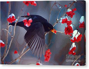 Black Bird In Flight Canvas Print by Jerry L Barrett