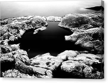 Black Cold Mirror Canvas Print by Matthias Siewert